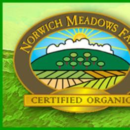 Norwich Meadows Farm
